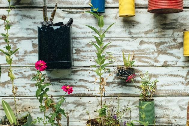 Bunte Blumentöpfe hängen an einer Wand